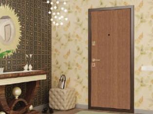 Какие бывают металлические двери? Типы металлических дверей.
